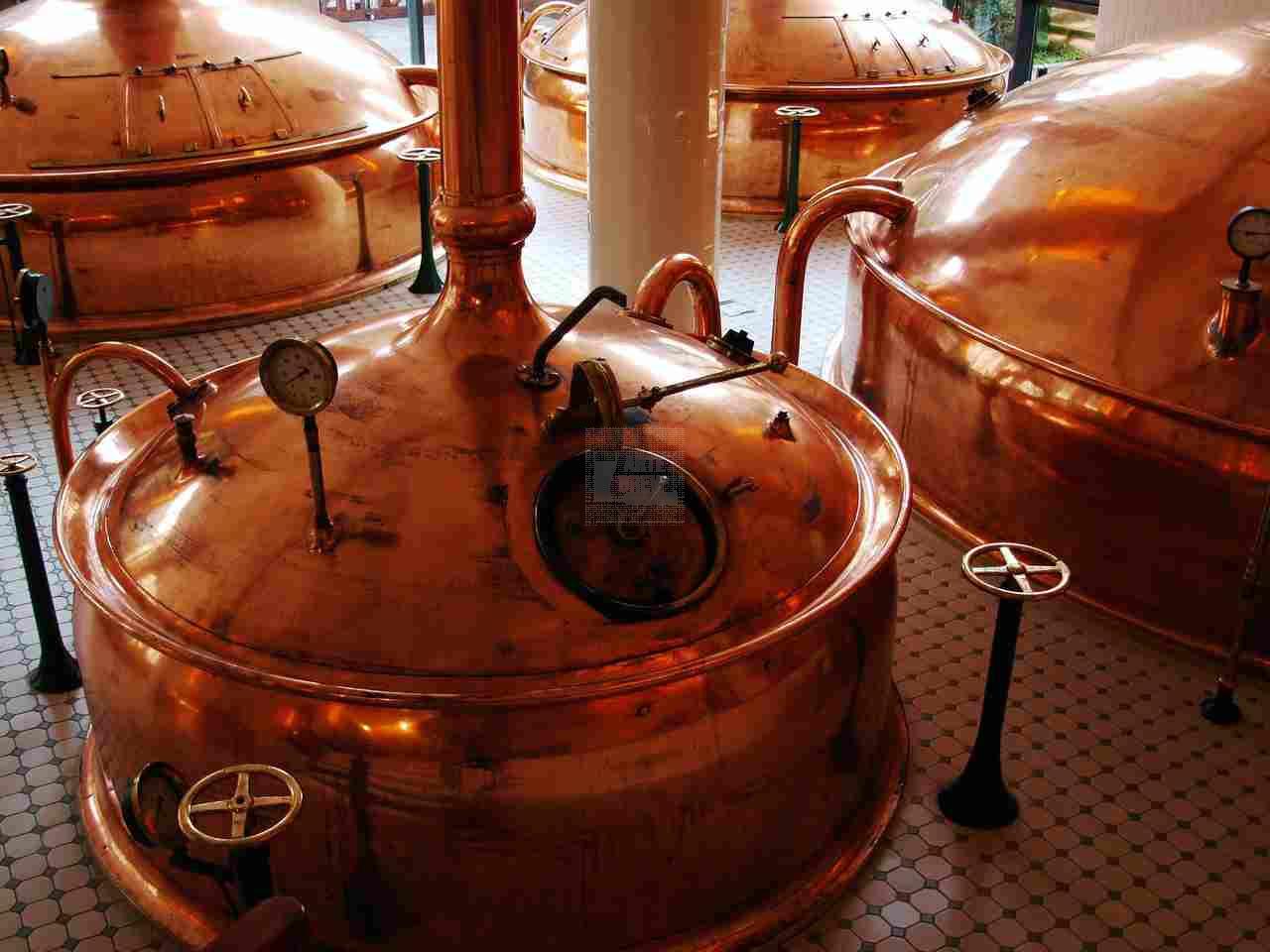 Curso Avançado de Produção de Cervejas ArteBrew