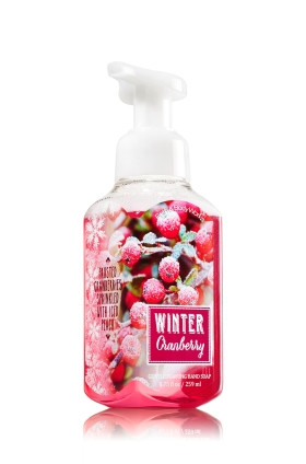 Sabonete Espuma de sabão Anti-Bacterial Gentle Foaming Hand Soap Bath & Body Works Winter Cranberry