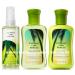 Coconut Lime Breeze Travel Size Body Care Bundle 88ml Bath & Body Works