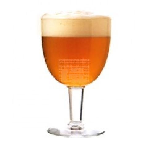 Belgian Golden Strong Ale - Kit Matéria-prima para 20 litros de cerveja