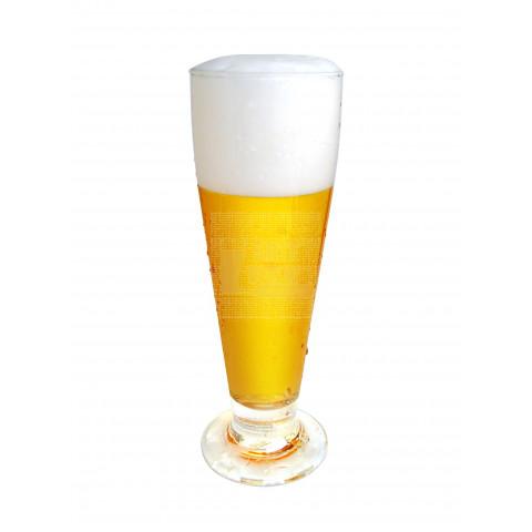 Pilsen - Kit Matéria-prima para 10 litros de cerveja.