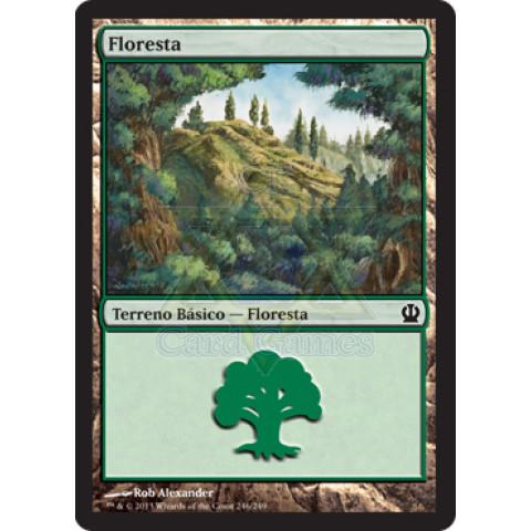 Basic Land - Forest / Terreno Básico - Floresta