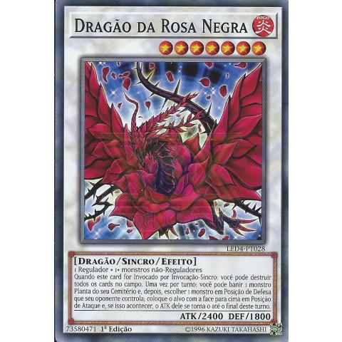 Dragão da Rosa Negra / Black Rose Dragon