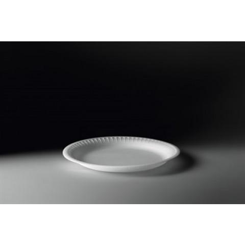 Prato Descartável Isopor para Refeição 26cm c/100unidades