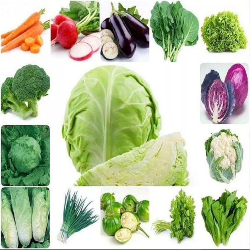 Kit Verdura Legumes 18 Espécies - 630 Sementes