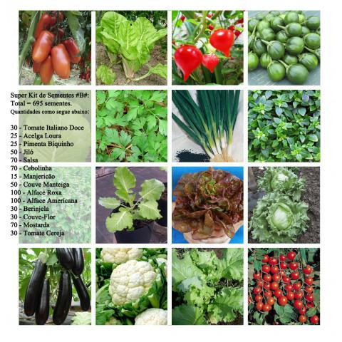 Super Kit Sementes #b#s Para Horta 14 Variedades