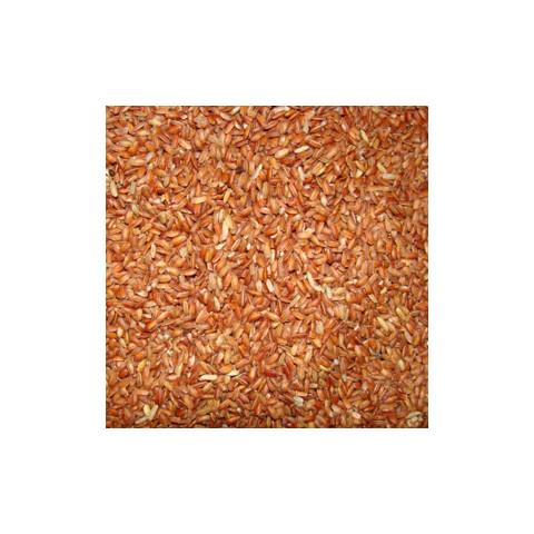 Arroz Integral Agulha Vermelho - à Granel - Preço/Kg
