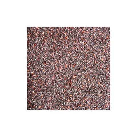 Arroz Negro - à Granel - Preço/Kg