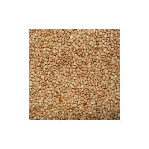 Feijão de Corda - à Granel - Preço/Kg