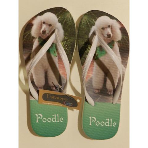 Chinelo Personalizado Poodle