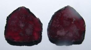 Tumalina Melancia - Par Placa 24x24.5 mm