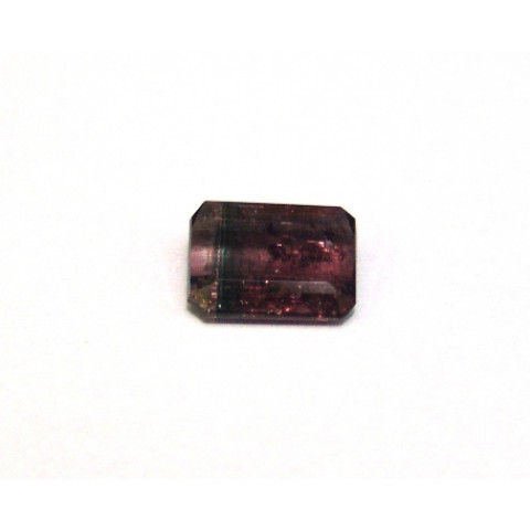 Turmalina Bicolor - Retangular Facetada 10.5x8mm