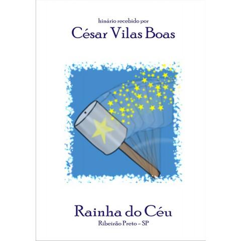 César Augusto Vilas Boas - Pelicano