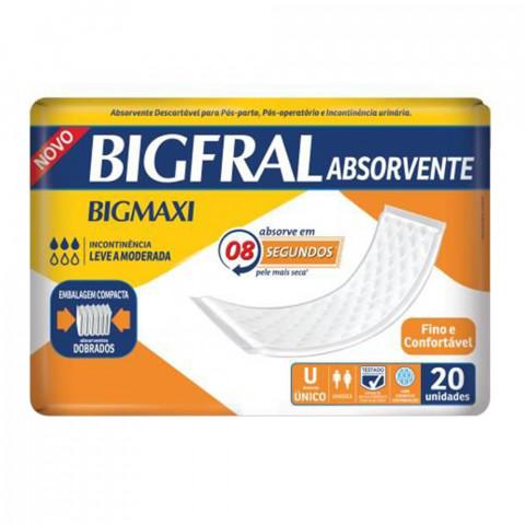 ABSORVENTE GERIATRICO BIGFRAL 20un