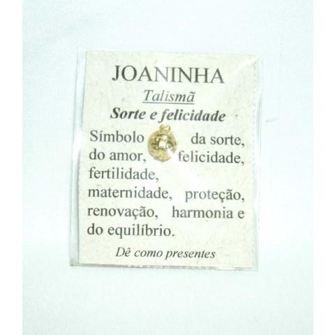 CA91005 - Talismã Joaninha (Mensageira dos Desejos)