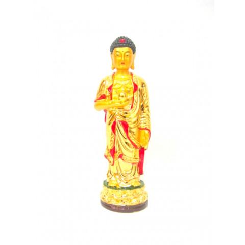 CPA000130003 - Budha Medicina (2051-3)