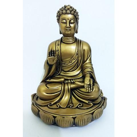 CPA005480054 - Buda Sakyamuni 1 O