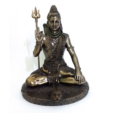 CPA039539234 - Shiva Bronzeado