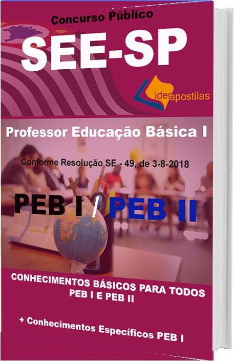 Professor Educação Basica I do estado
