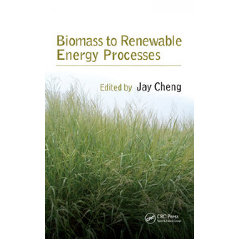 Biomass to Renewable Energy Processes, Edition 2009