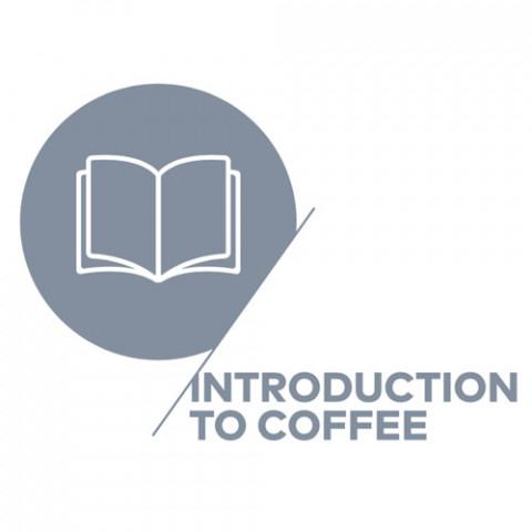 Curso de Introdução aos Cafés Especiais - Data: 13/12/2018