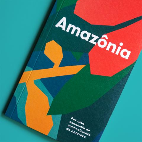 AMAZÔNIA -  Por uma economia do conhecimento da natureza - Ricardo Abramovay