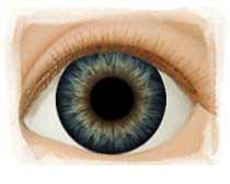 Olhos Dark Blue Dusk -26mm