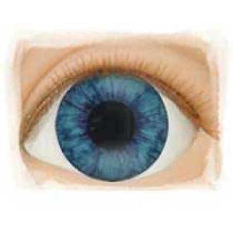 OlhosDArk Blue - Edição limitada -16mm