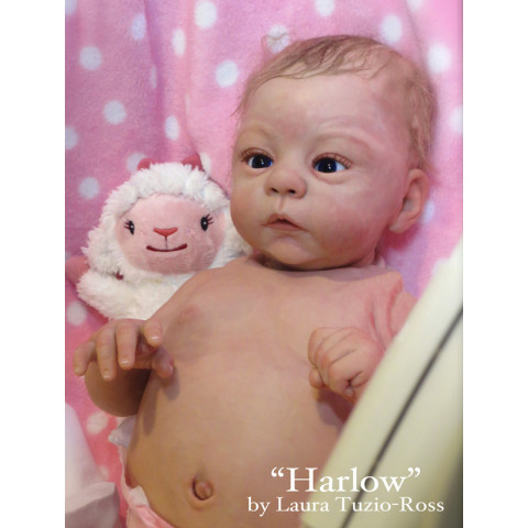 Harlow  -Ed. Limitada ULTIMO KIT