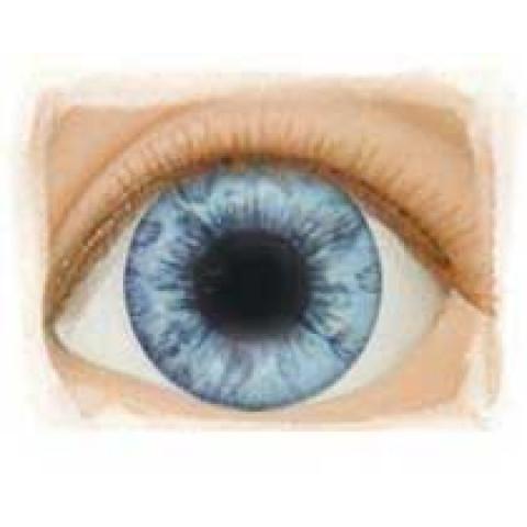 Olhos Light Blue -22mm