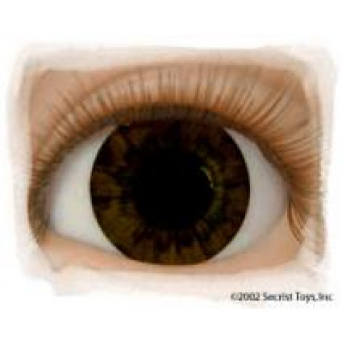 Olhos Chocolate Brown-16mm