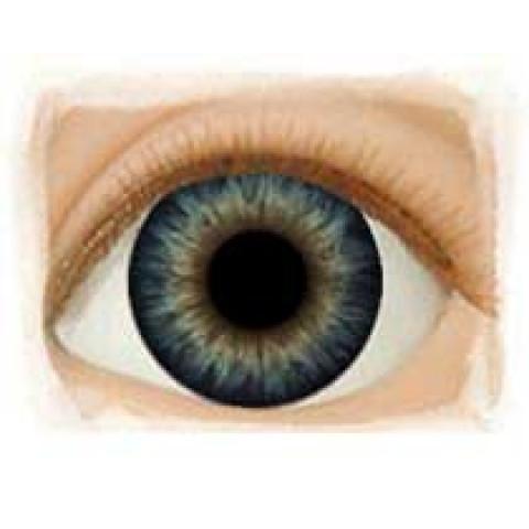 Olhos Dark Blue Dusk -12mm