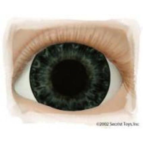 Olhos Darling Blue ( vários tamanhos)