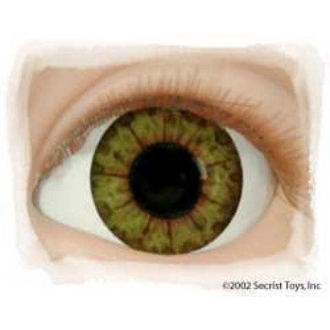Olhos Golden Hazel -16mm