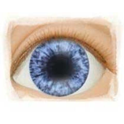 Olhos Indigo - Edição limitada ( vários tamanhos)
