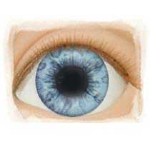Olhos Light Blue -12mm