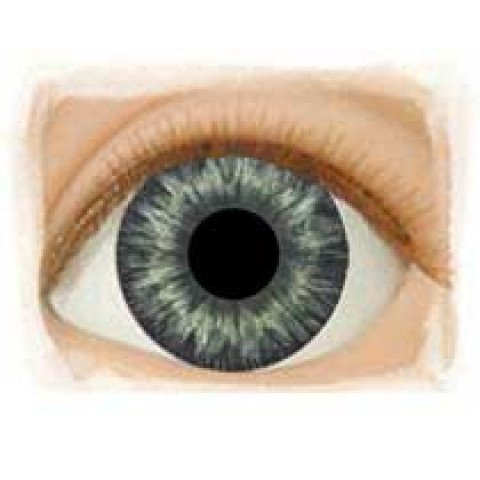 Olhos Medium Blue Gray -12mm