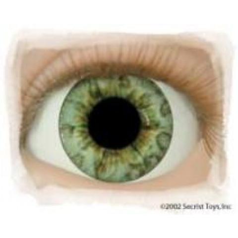 Olhos Ocean Green -16mm