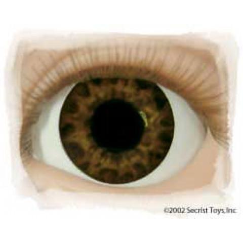 Olhos Tiger Brown ( vários tamanhos)