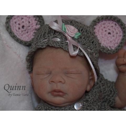 QUINN  - mini - Ed. Limitada -