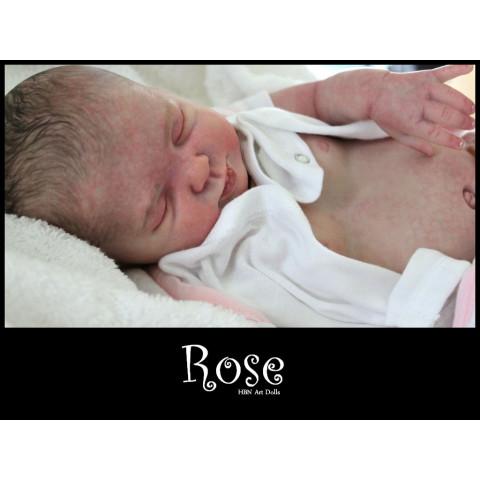 Rose PROMOÇÃO