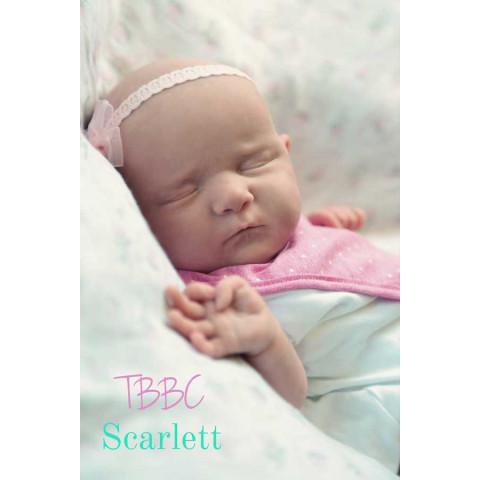 Scarlet-  ED. LIMITADA PROMOÇÃO
