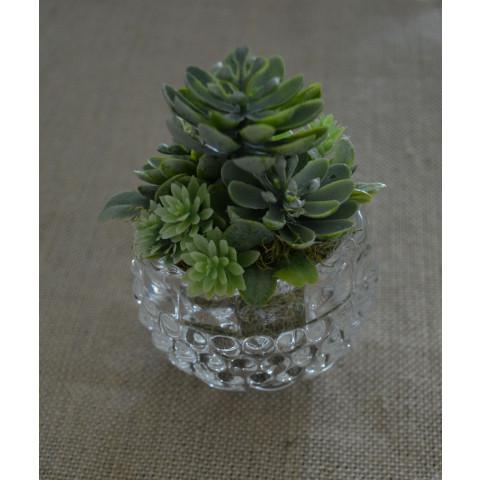 Arranjo com Suculenta - Vasinho de vidro