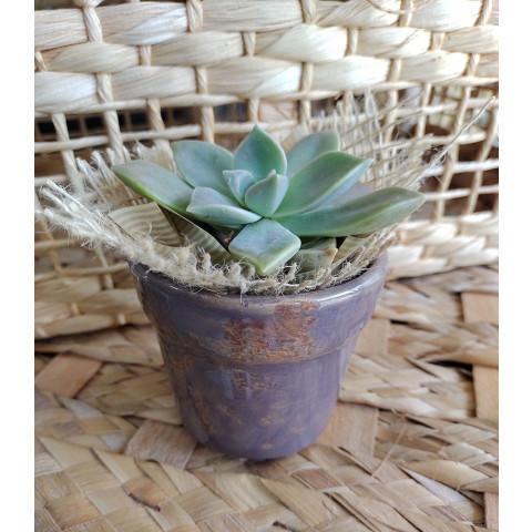 Vaso de Cerâmica - Lilás