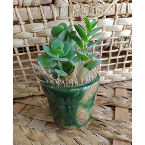 Vaso de Cerâmica - Verde