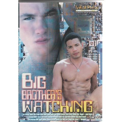 Dvd Big Brothers Watching Pulse Gay Importado Original