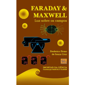 Faraday & Maxwell - Luz sobre os campos