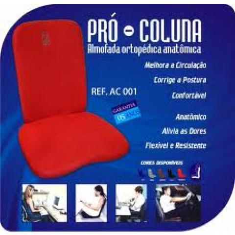 Almofada Ortopédica Pró-Coluna Ortho Pauher