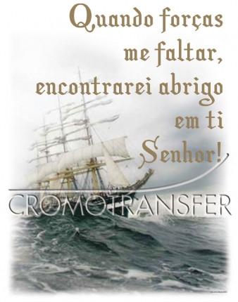 TRANSFER ABRIGO (936)