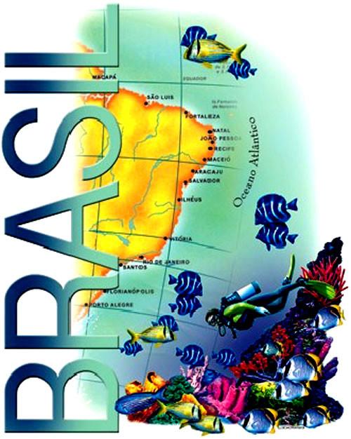 TRANSFER BRASIL ATLÂNTICO (064)